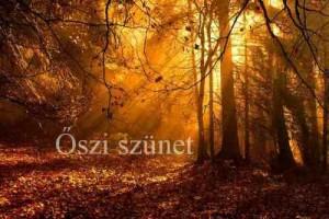 oszi-szunet